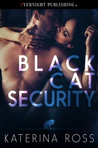 blackcatsecurity1s.jpg