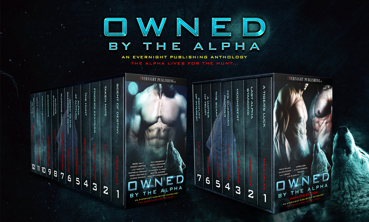 owned-by-the-alpha-antho1-evernightpublishing2017-2boxset.jpg